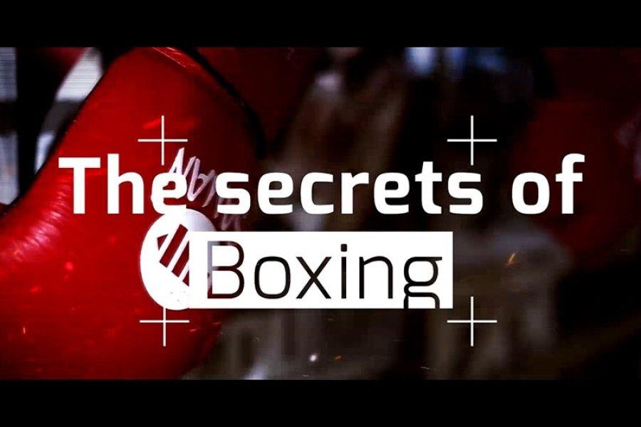 A box titkai - 3. rész