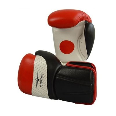 Boxing gloves, Phoenix, Pro, coach, leather, white-black-red