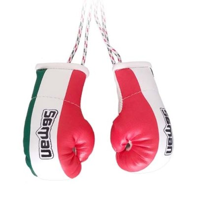 Mini Boxing Gloves, Saman, Hang-up, pair, tricolor